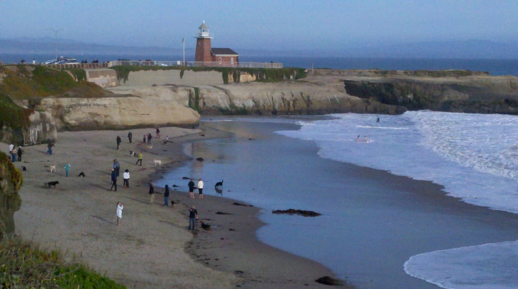 Dog Beach, Santa Cruz