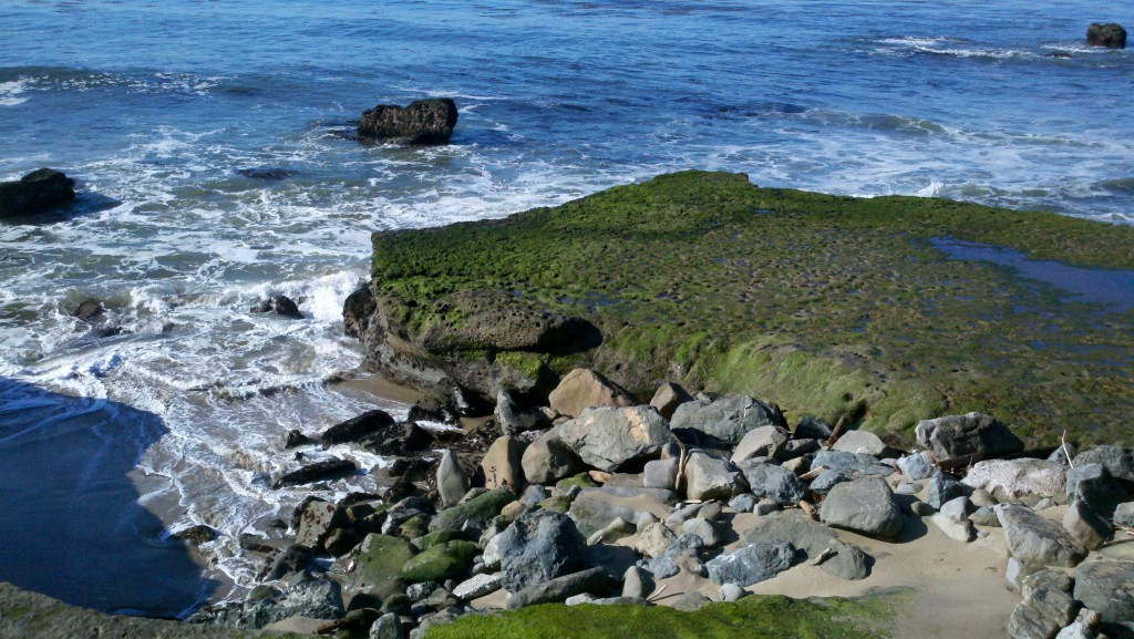 Rocky shores at Pleasure Point