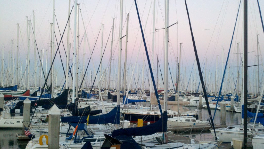 """image of sailboats in South Beach Harbor, San Francisco"""