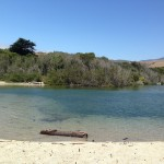 Images of lagoon at Andrew Molera State Park